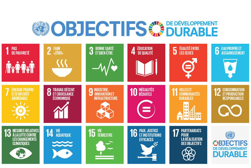 F-SDG-Poster.jpg
